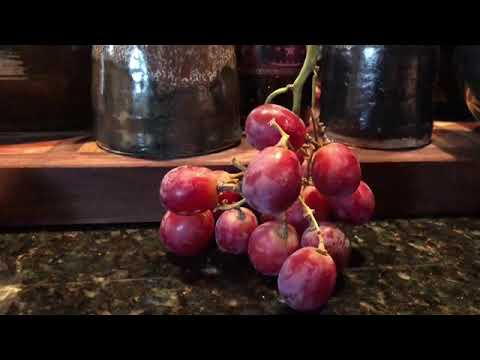 Grape Daily (DAY 874)
