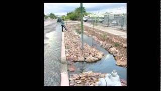 Tucson 25 years since Brad Lancaster Harvesting King started saving water by using stormwater on str