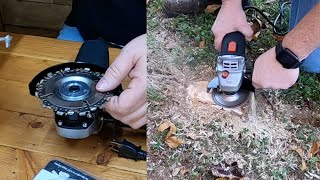 How To Get Rid Of Tree Roots FAST!
