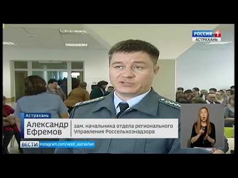 Об итогах работы представителей социальных учреждений в информационной системе «Меркурий» в Астраханской области