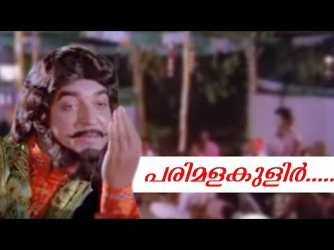 Prem Nazeer Hit Vol 02   Malayalam Non Stop Movie Songs | K J Yesudas | S Janaki | Jayachandran |