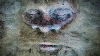 Bigfoot Found and Killed!