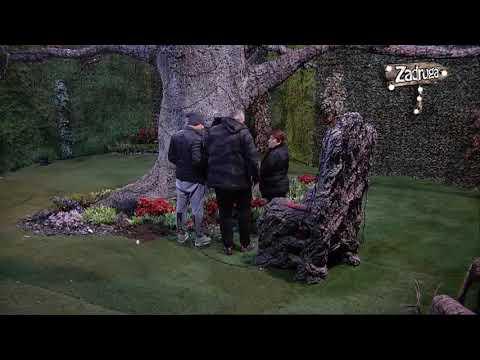 Zadruga 2 - Rada, Bora i Miki u Rajskom vrtu - 04.12.2018. (видео)