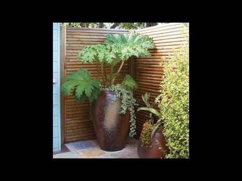 Ideas de diseño de pantalla de privacidad jardín