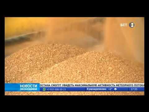 АПК Башкортостана нарастил экспорт сельхозпродукции