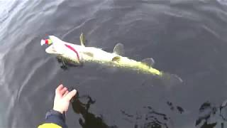 Рыбалка на базе у федора в марте 2020