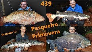 Inverno gelado no Pesqueiro Primavera - Fishingtur na TV 439
