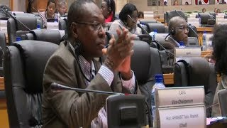 Pan-African parliament considers creation of continental police force
