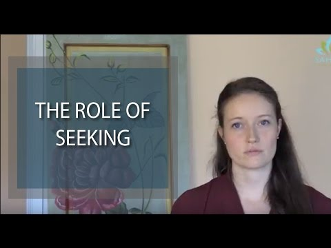 The role of seeking