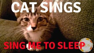Cats Singing Song | Sing me to Sleep by Alan Walker