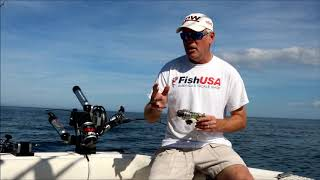Trolling Speed and The Value Of A Fish Hawk
