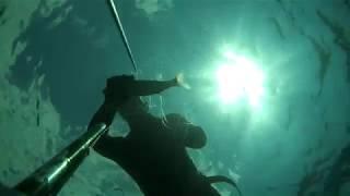 Подводная охота Черное море.Охота на кефаль.ЮБК