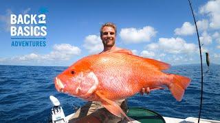 POV Island Survival - Fishing Catch & Cook (Ep:14)