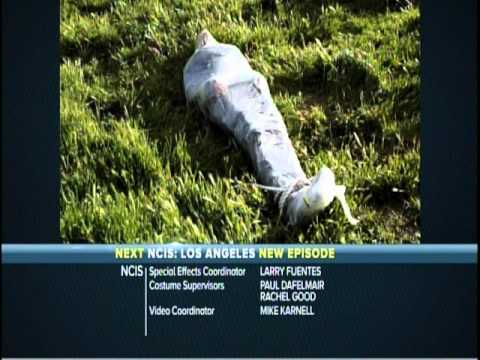 NCIS: Naval Criminal Investigative Service 8.24 (Preview)