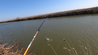 Когда запрет на рыбалку 2020 в дагестане
