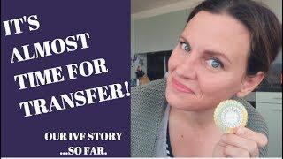 IVF UPDATE & ESTROGEN BEFORE TRANSFER | EILEEN VINCETT