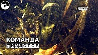 Диалоги о рыбалке в тайге