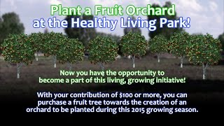Plant a Fruit Orchard