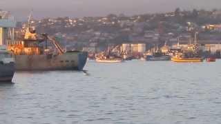 preview picture of video 'Ingreso Bahía de Coronel'