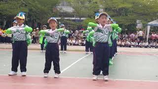 """""""การแสดงกายบริหารของสีเขียว""""งานกีฬาสีโรงเรียนโพธิสารศึกษาประจำปี2561"""