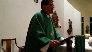 preview picture of video 'XXIX Domingo Ordinario 2014, Evangelio de san Mateo, 28, 16'