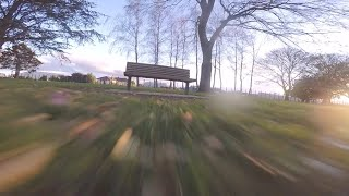 Twilight at the Dog Park | FPV Freestyle
