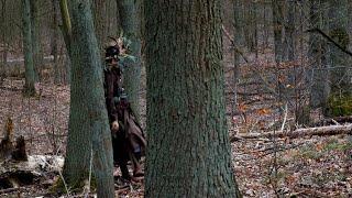 The Art of Tree Walking