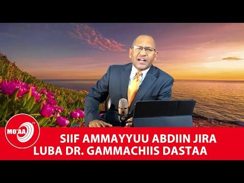 ABDIIN AMMAYYUU SIIF JIRA! LUBA DR. GAMMACHIIS DASTAA