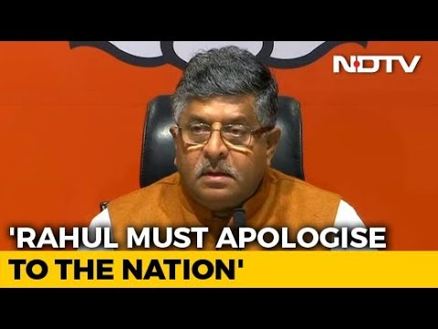 """Rahul Gandhi Should Apologise To Nation"": BJP After Top Court's Warning"