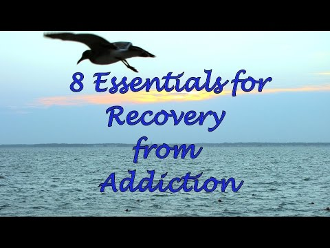 Part 5:  8 Essentials for Recovery from Addiction by Counselor Carl