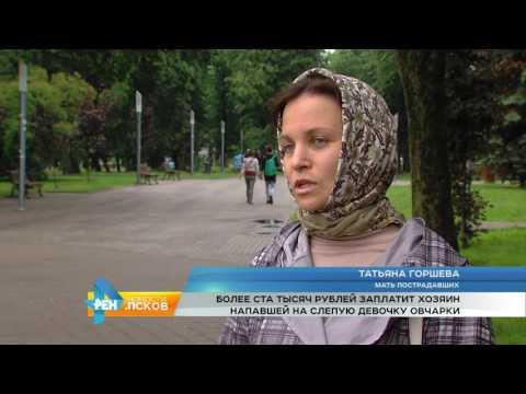 Новости Псков 03.07.2017 # Суд вынес вердикт по делу о нападении собаки в Павшино