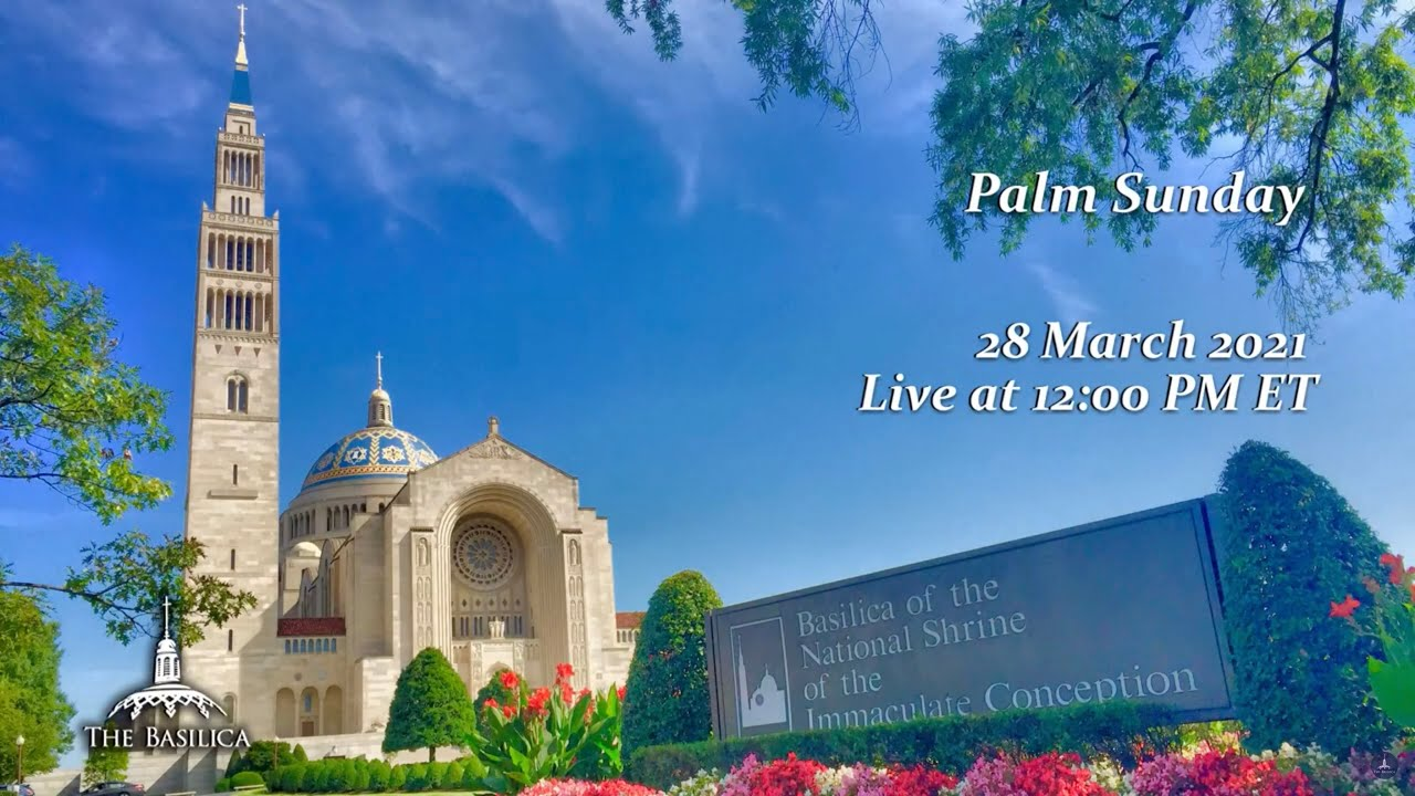 Palm Sunday of the Passion of the Lord 28 March 2021 - Basilica Sunday Mass Livestream