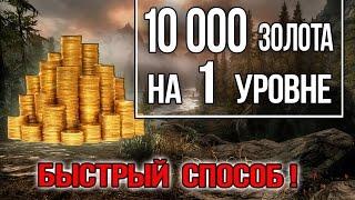 Skyrim - 10000 ЗОЛОТА в начале игры на Легендарной сложности