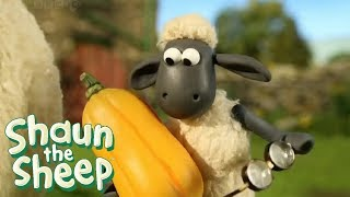 Download Video Shaun The Sheep Full Episodes | Shaun The Sheep 2017 Season 2 Episodes 1-10 | Shaun The Sheep HD MP3 3GP MP4