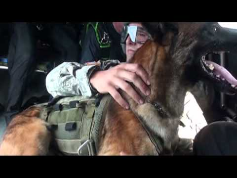 Double-Amputee Solider Skydives With War Dog