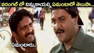 వరంగల్ లో నిమ్మకాయల్ని ఏమంటారో తెలుసా..? | Sunil Hilarious Comedy Scenes