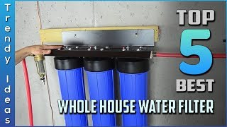 Top 5 Best Whole House Water Filters in 2020