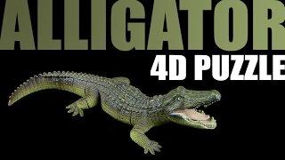 4D Alligator - Puzzle rückwärts / puzzle backwards & 360°