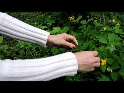 Tabletták az ujjak artritiszének kezelésére
