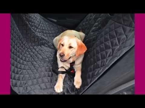 tierlando Autoschondecke – Die Lösung für Hundplätze auf der Rückbank!