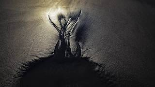 Sandscapes: Nature's Fleeting Art