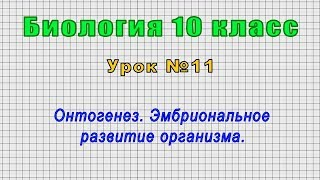 Биология 10 класс Урок 11