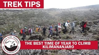 The Best Time of the Year to Climb Kilimanjaro | Trek Tips
