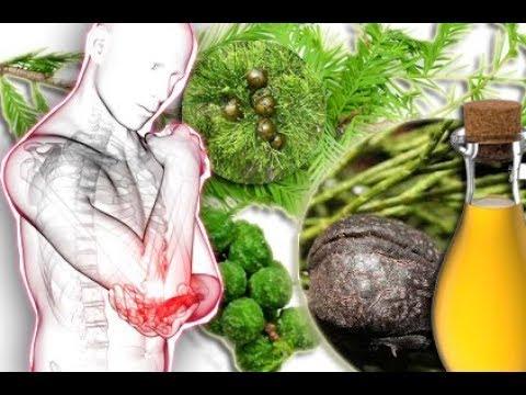 Die Behandlung des Ekzems vom Öl des schwarzen Kümmels die Rezensionen