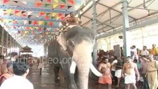 Elephant Race at Guruvayur
