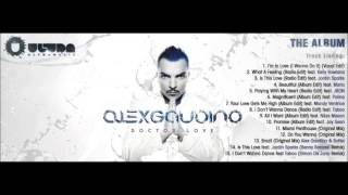 03. Alex Gaudino Feat. Jordin Sparks - Is This Love (Radio Edit)
