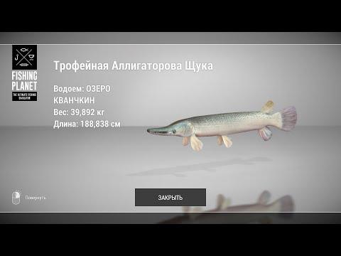 Fishing Planet - Как и где ловить Аллигаторовую Щуку? (Озеро Кванчкин)