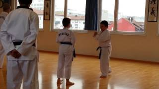 preview picture of video 'Taekwondo Prüfung Kwak Sport Pforzheim 3. Kup'