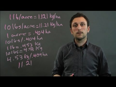 El complejo de los ejercicios estadísticos para el adelgazamiento