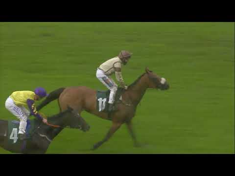 Highland Acclaim's win at Catterick 25th August 2020.